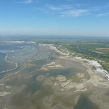 Flying over the French Camargue